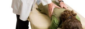 Chiropractic Minnetonka MN Chiropractic Adjustment